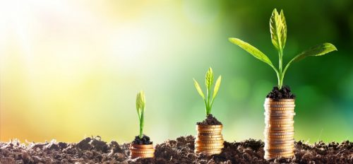 Develop, make sales, and grow your company - How to Start a Startup