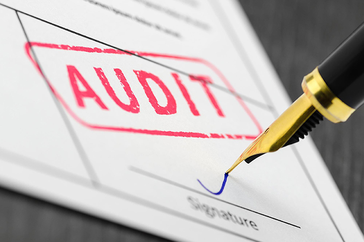 How To Start an Audit Agency?