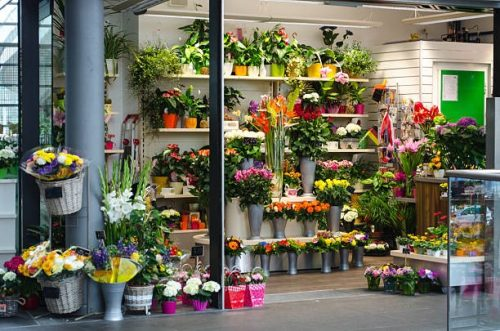 Shop of Flowers - Small Business to Start