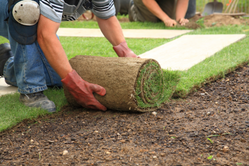 Step 1: Understanding The Industry - Landscaping Business