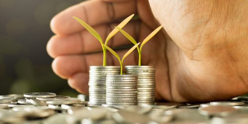 A Realistic Approach To Micro-Finance Enterprises - Businesses to Start With Little Money