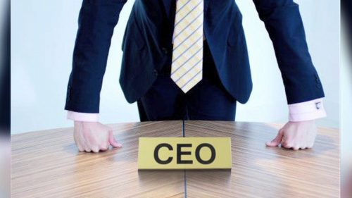 CEO: Roles and Characteristics