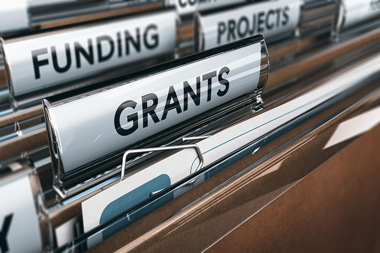 Government Grants: Friend or Foe