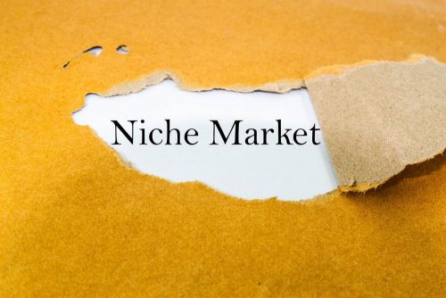 How Does Niche Marketing Affect Economic Growth?