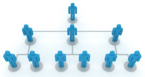 What Determines the Structure of an Organization?