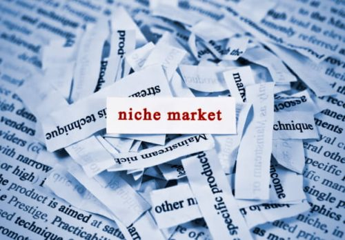 What Exactly is the Niche Market?