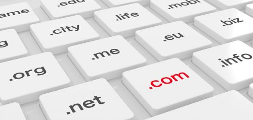 Why Look into a Domain Owner?