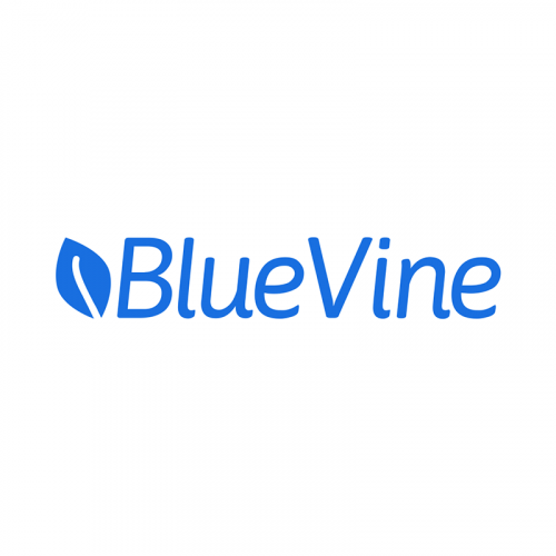 BlueVine - Loans for Small Business