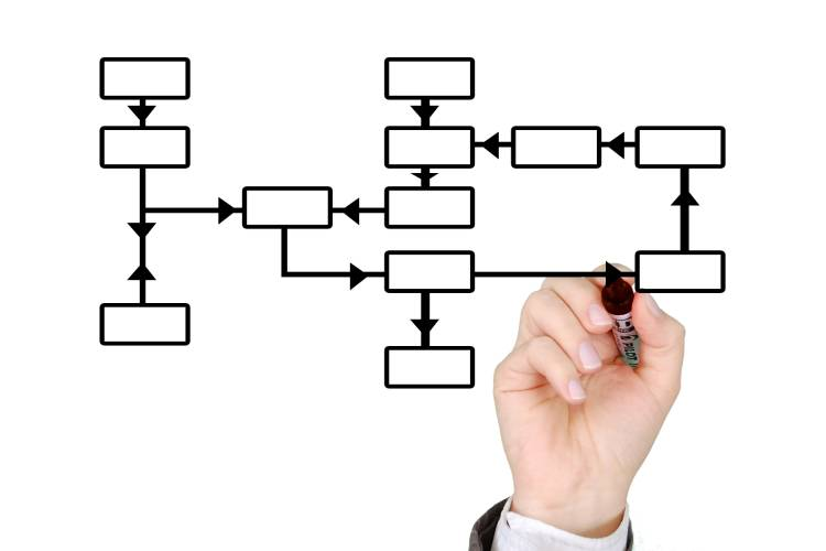 How to create an organizational chart?