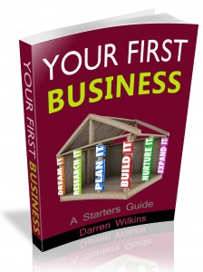 Your First Business: A Starters Guide book