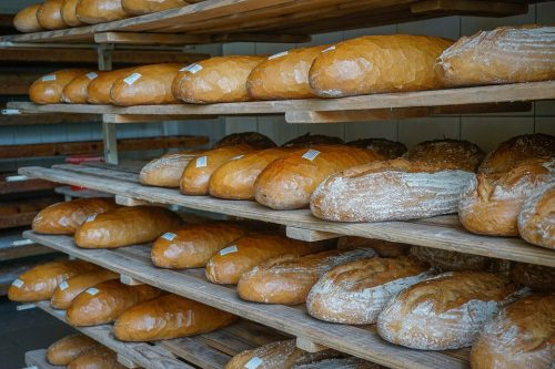 Bread Manufacturing Business