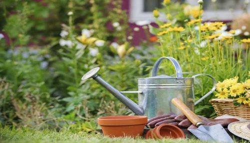 Gardening Services - Family Business Ideas