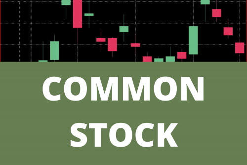 Common Stock and Its Types